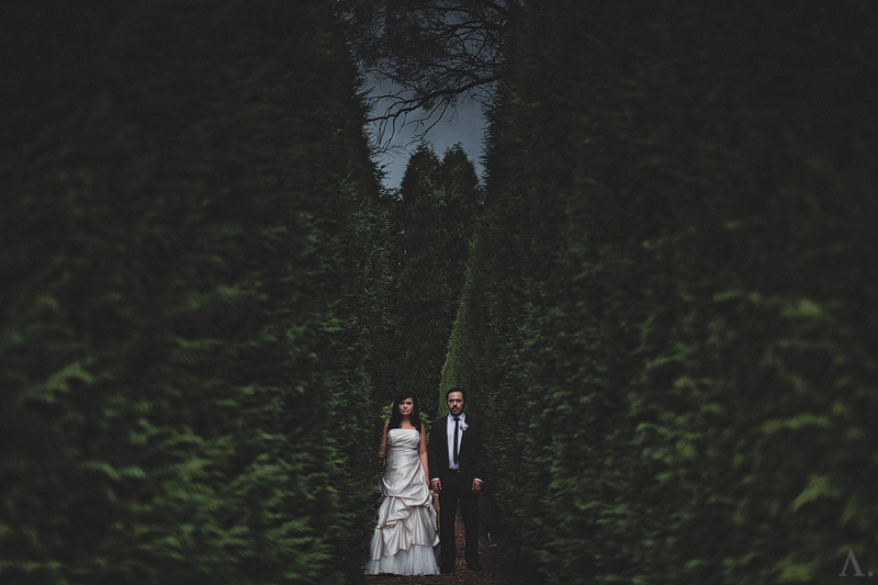 hopewood-wedding-photographer-82