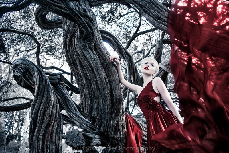 Lindsay-Adler-Photography-_MG_5167-a