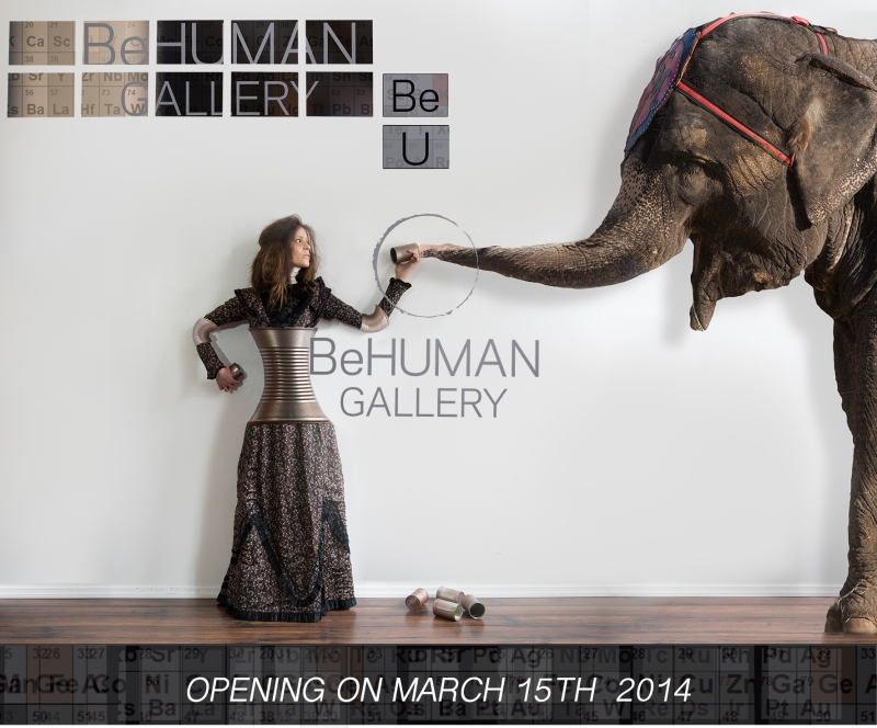 The Elephant In The Room BeU Opening Day Image
