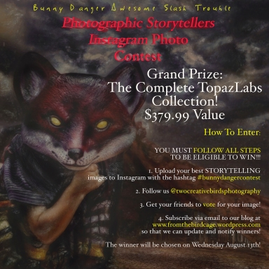 Bunny danger storytelling contest5web