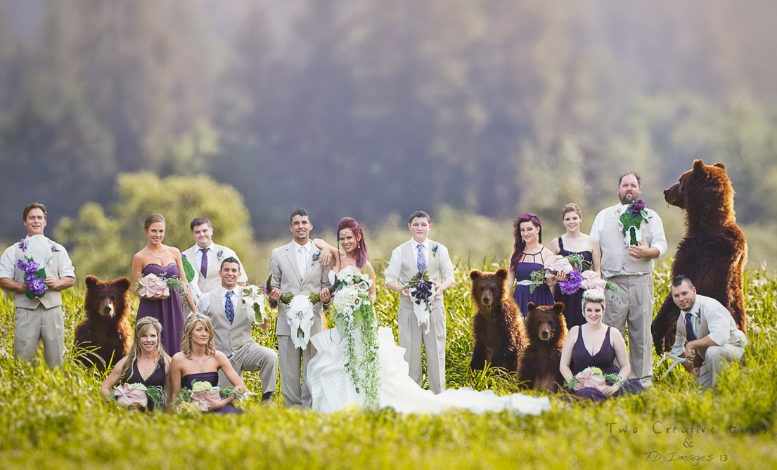 The Ultimate Wedding Partyweb